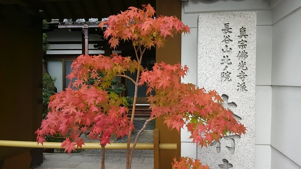 f:id:kyotomoyou:20161013132427j:plain