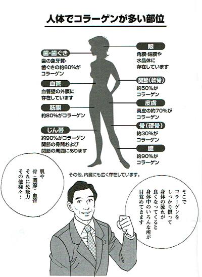 f:id:kyotomura4592:20161006225729j:plain