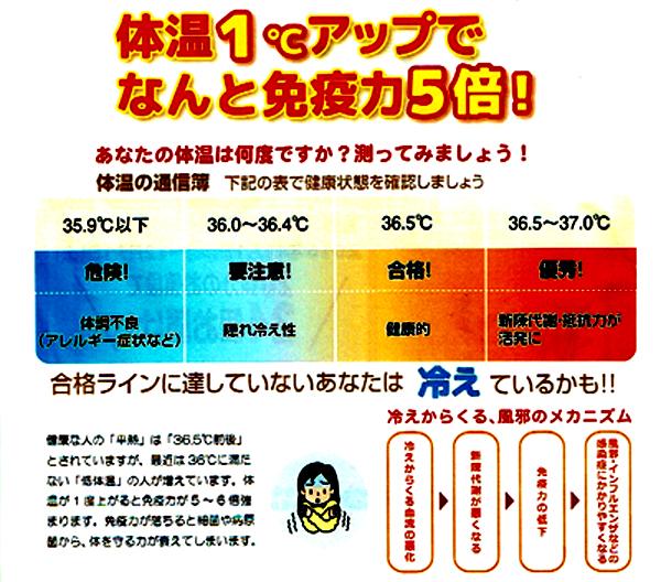 f:id:kyotomura4592:20161023055502j:plain