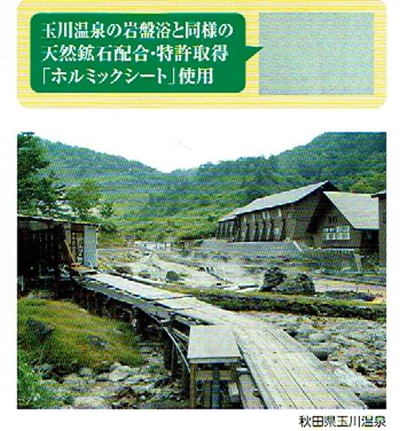 f:id:kyotomura4592:20170114061343j:plain