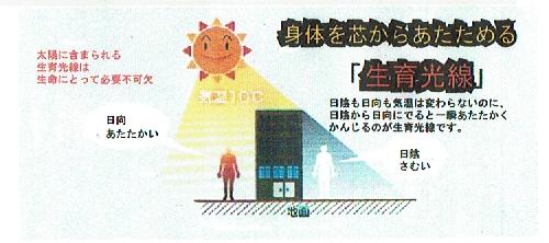 f:id:kyotomura4592:20170306204534j:plain