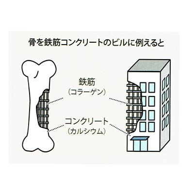 f:id:kyotomura4592:20180108054813j:plain