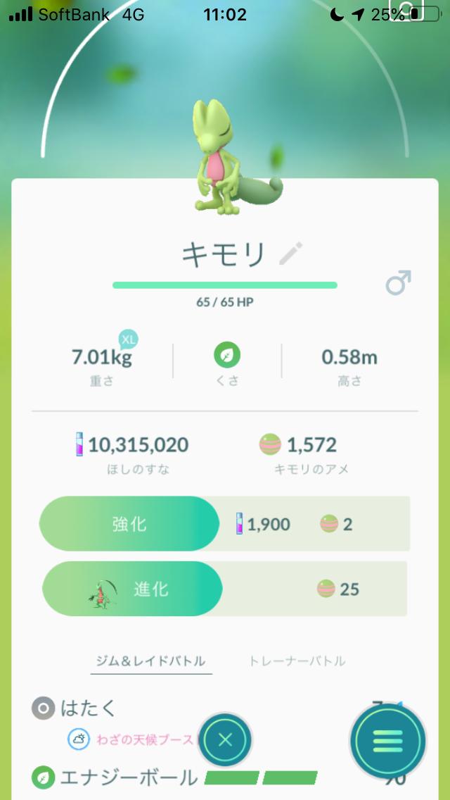 f:id:kyotopgo:20191215014648p:plain