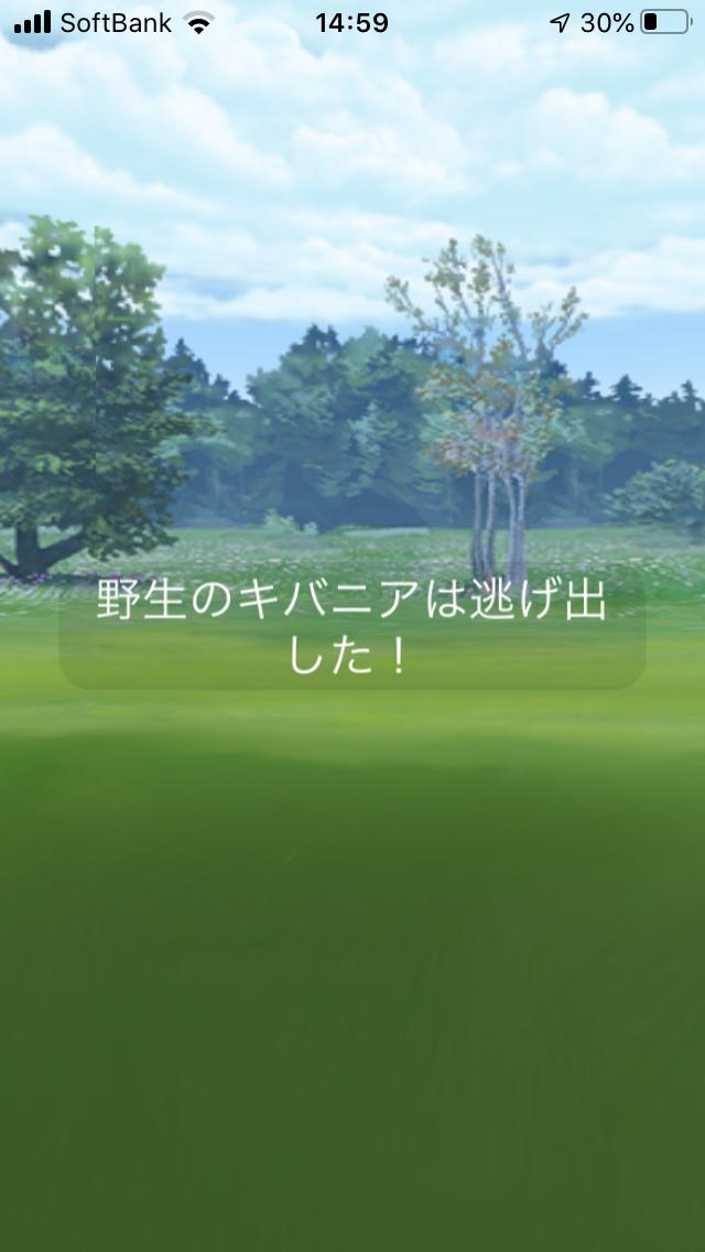 f:id:kyotopgo:20200517174458p:plain