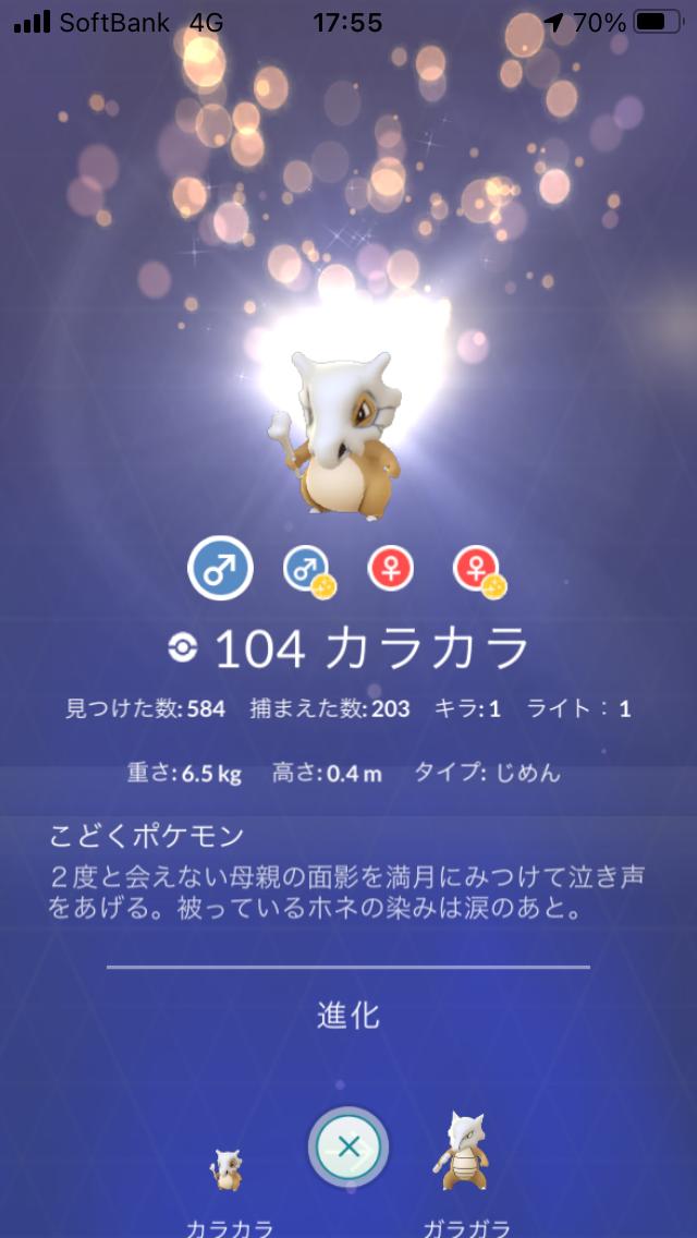 f:id:kyotopgo:20201104045820p:plain