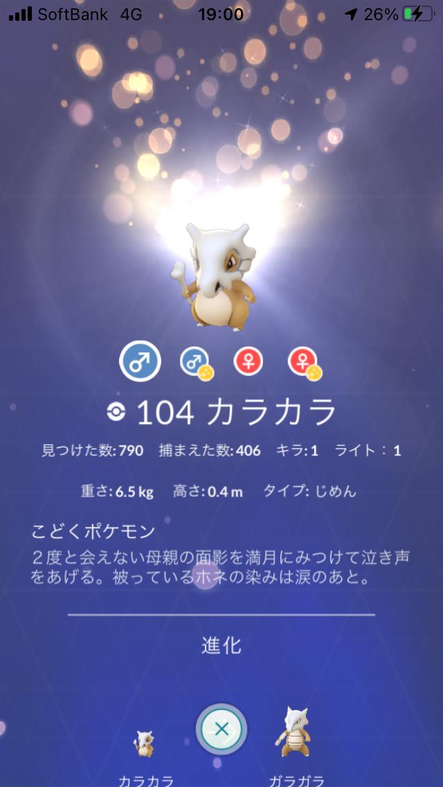 f:id:kyotopgo:20201104051858p:plain