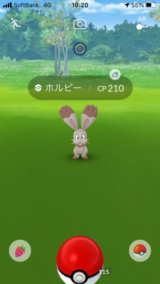 f:id:kyotopgo:20201202202006p:plain