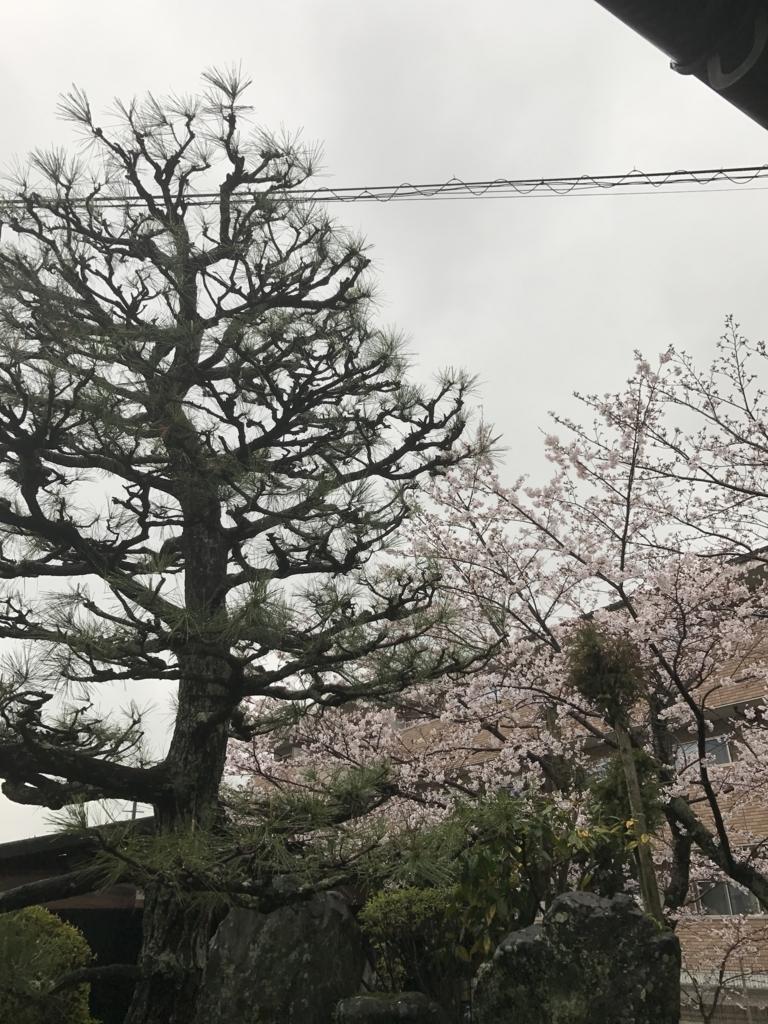f:id:kyotosan:20170408163500j:plain