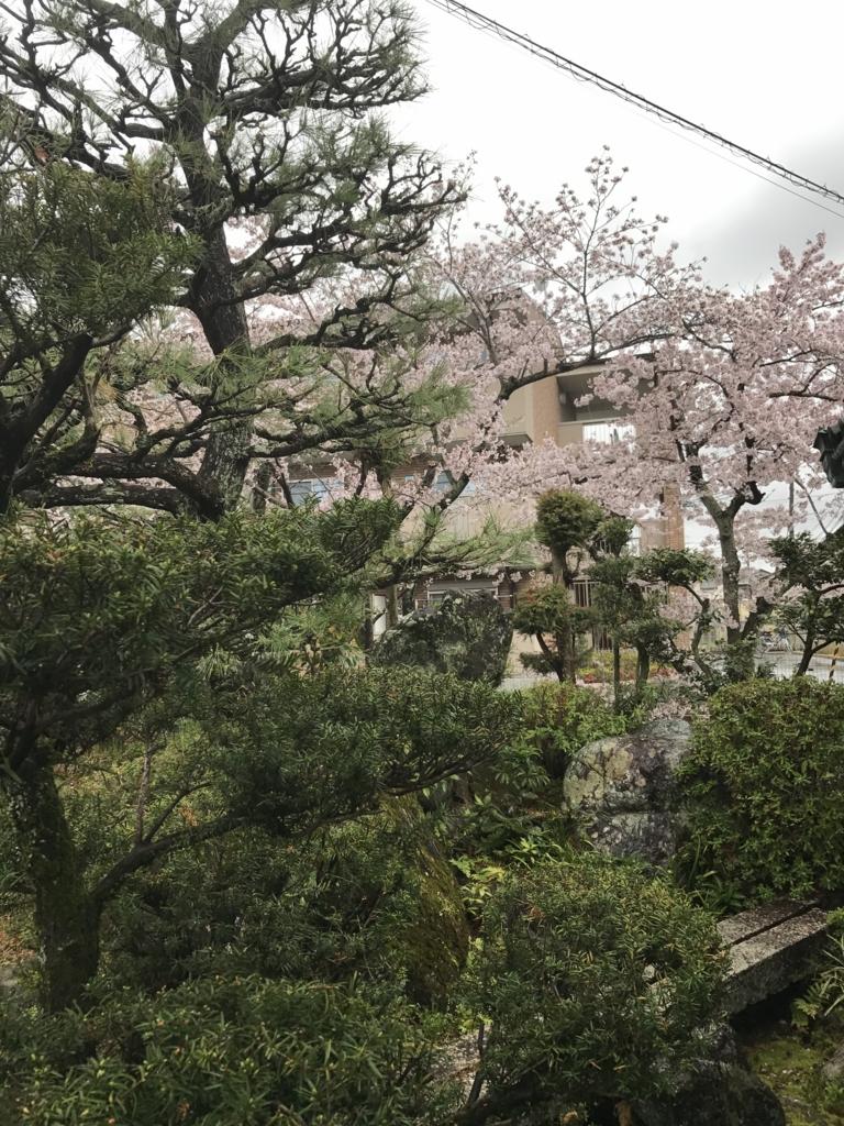 f:id:kyotosan:20170411090911j:plain