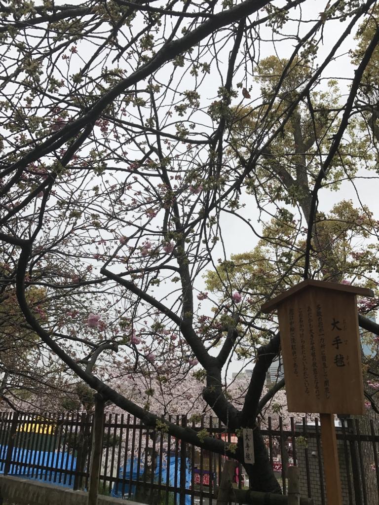 f:id:kyotosan:20170412182030j:plain