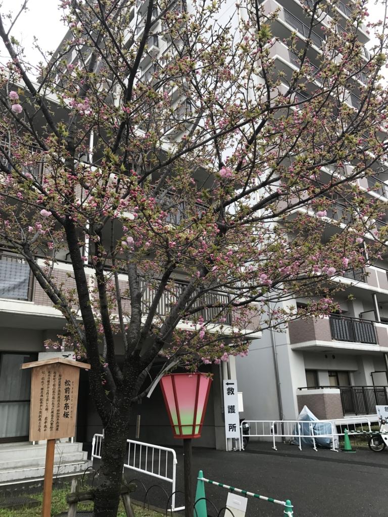 f:id:kyotosan:20170412184145j:plain