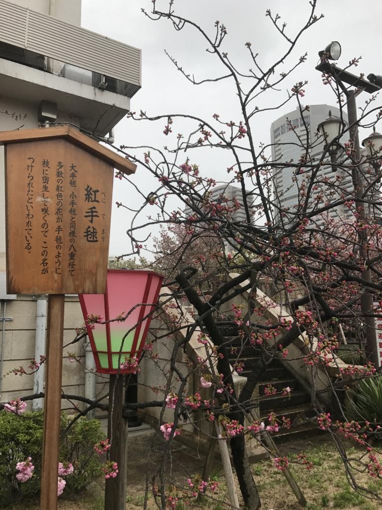 f:id:kyotosan:20170412212655j:plain