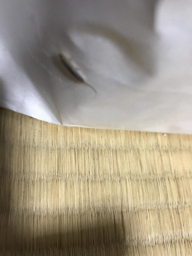 f:id:kyotosan:20170531231903j:plain
