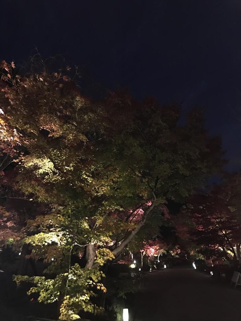 f:id:kyotosan:20181128211222j:plain