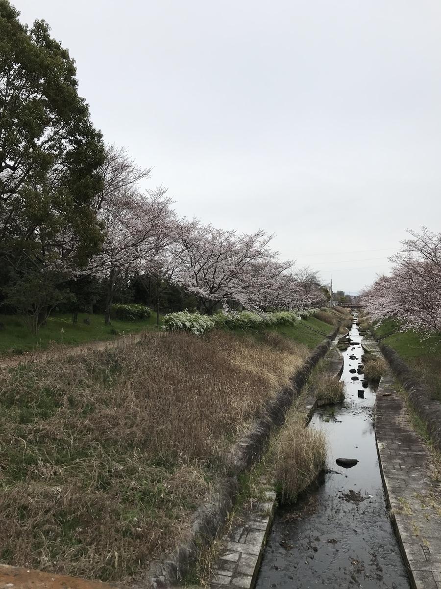 f:id:kyotosan:20200330213830j:plain