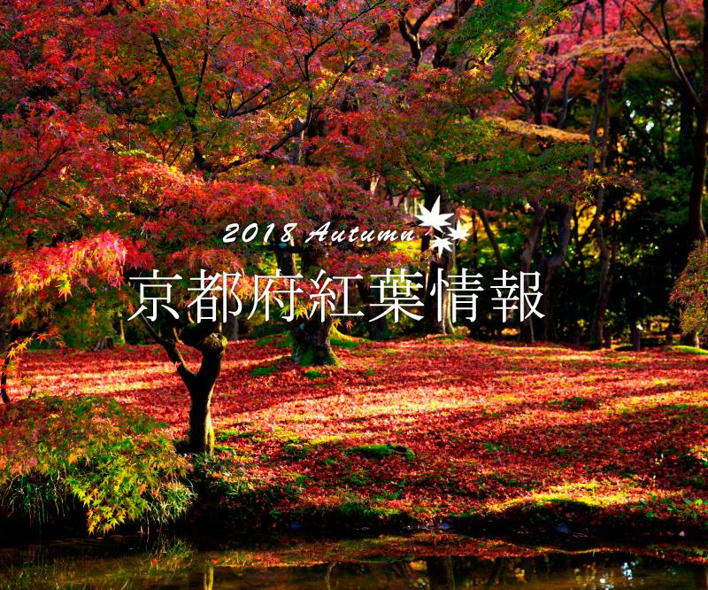 f:id:kyotoside:20180305150123p:plain