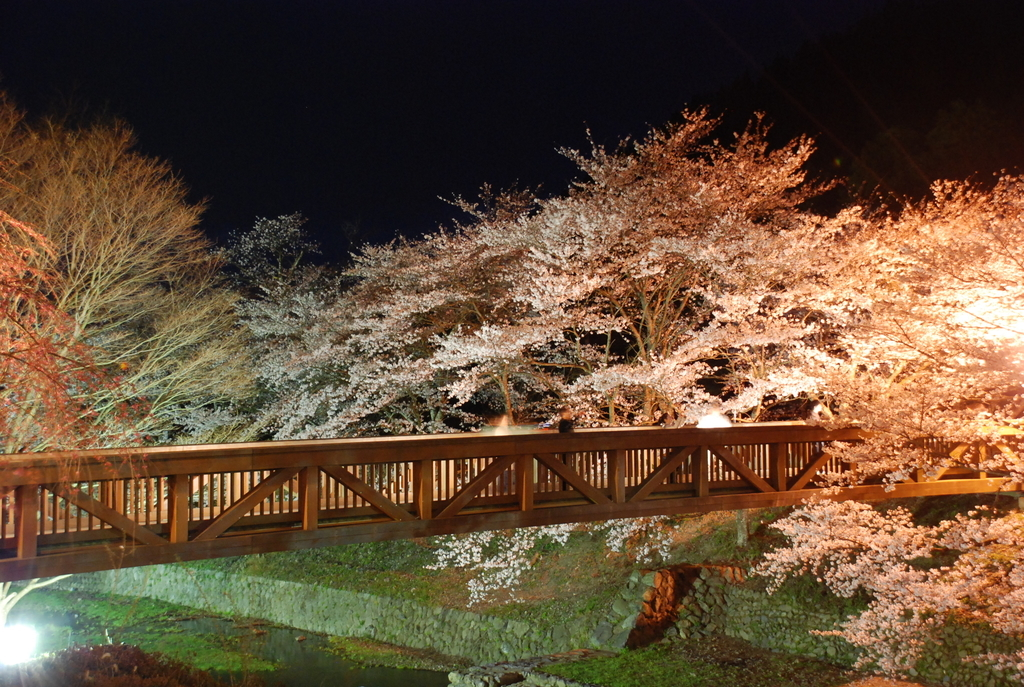 f:id:kyotoside_writer:20100405192007j:plain