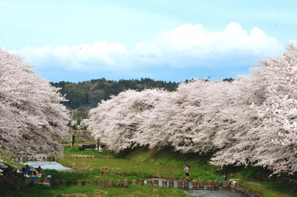 f:id:kyotoside_writer:20120415155221j:plain