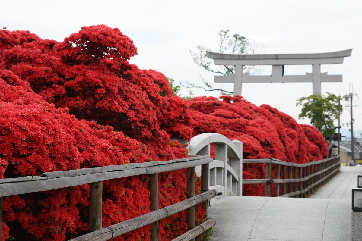 f:id:kyotoside_writer:20140428081954j:plain