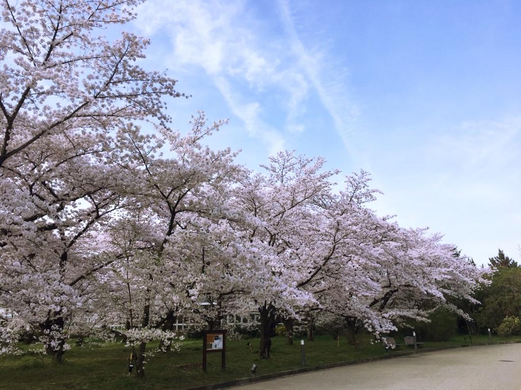 f:id:kyotoside_writer:20170411131346j:plain