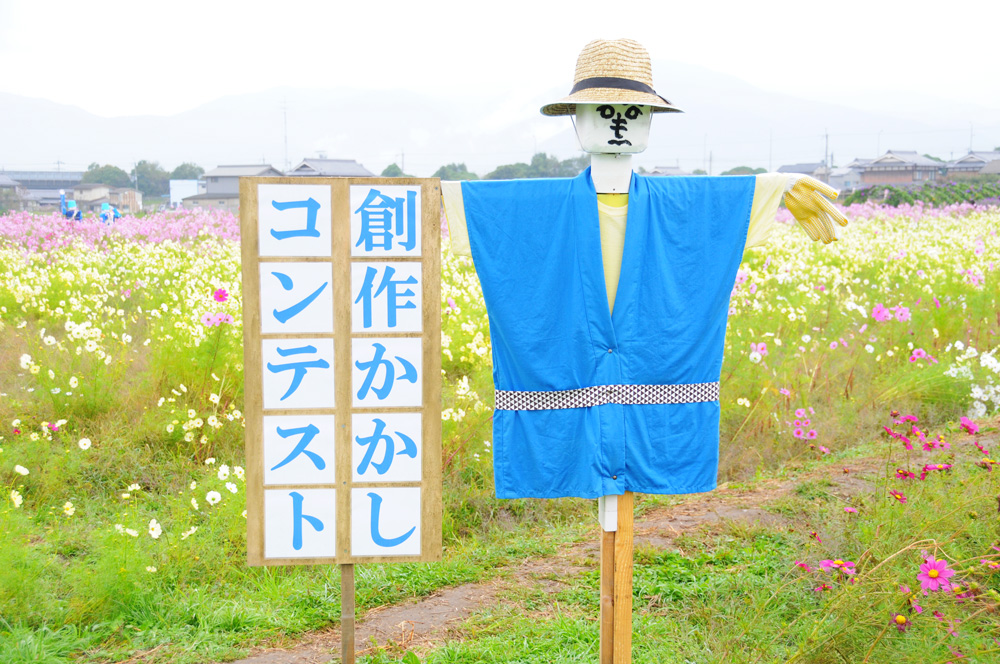 f:id:kyotoside_writer:20170904000541j:plain