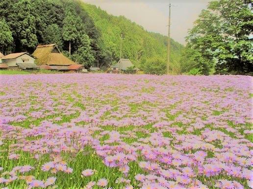 f:id:kyotoside_writer:20190702010243j:plain