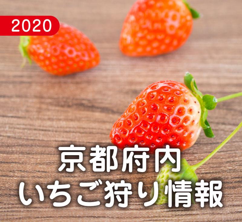 f:id:kyotoside_writer:20200123180115j:plain