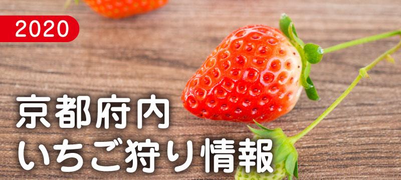 f:id:kyotoside_writer:20200123180237j:plain