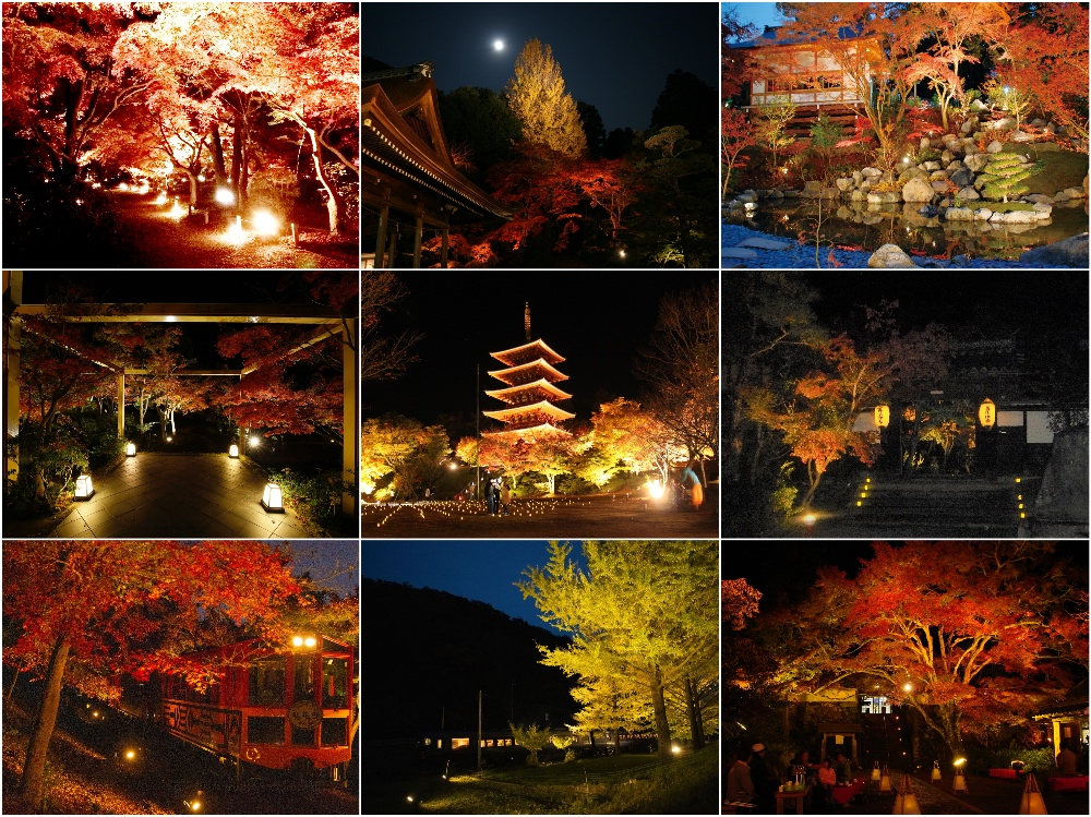 f:id:kyotoside_writer:20201008164109j:plain