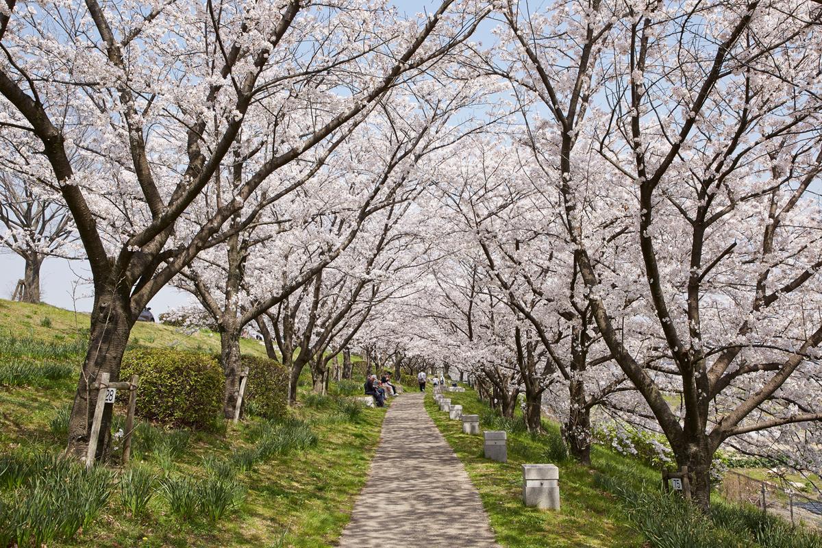 f:id:kyotoside_writer:20201027222008j:plain