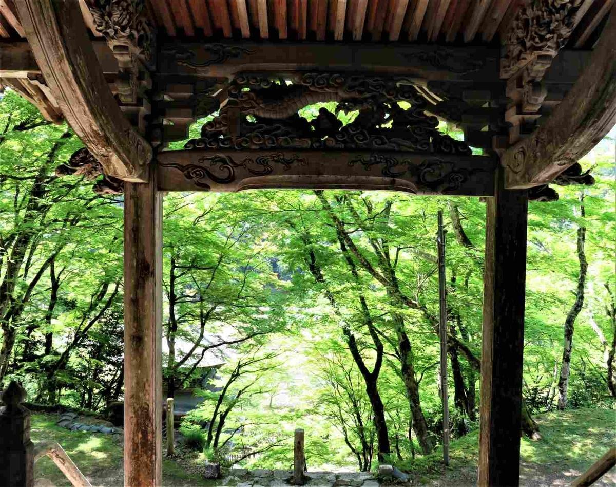 f:id:kyotoside_writer:20210422134435j:plain