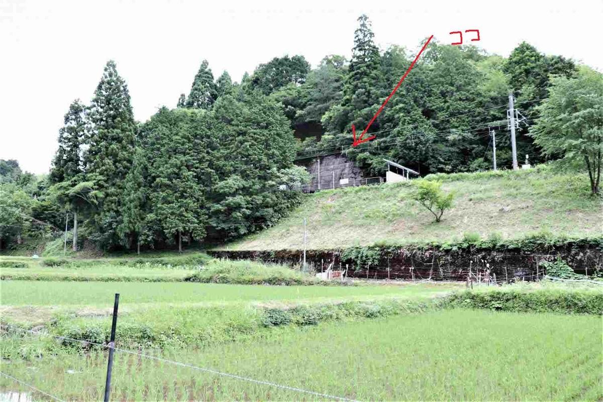 f:id:kyotoside_writer:20210816215759j:plain