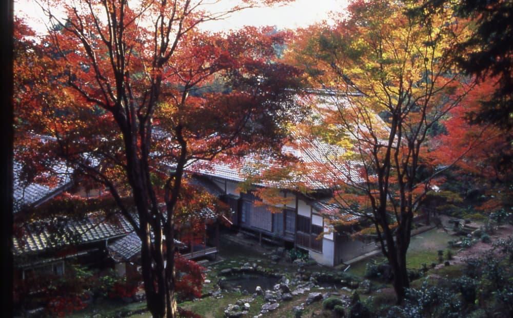 f:id:kyotoside_writer:20211005141553j:plain
