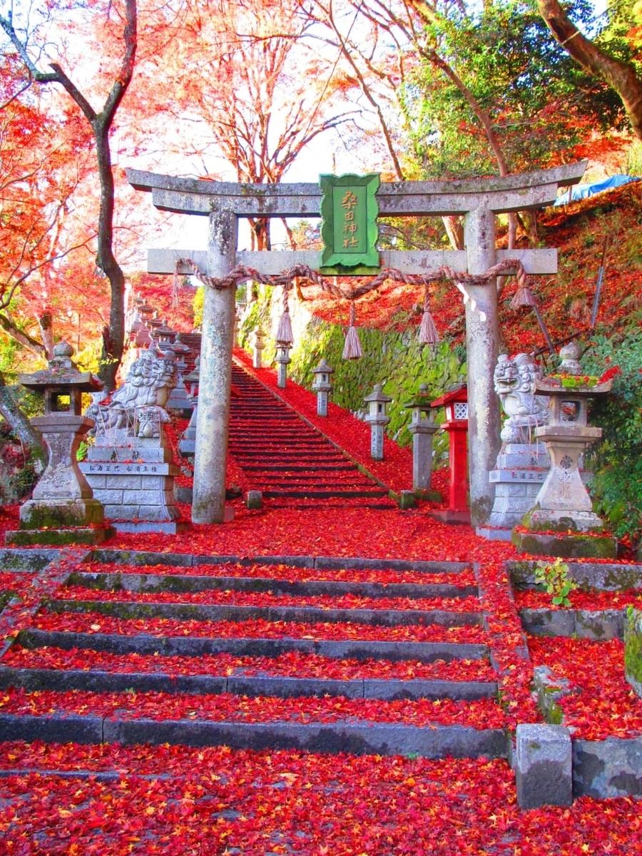 f:id:kyotoside_writer:20211005143332j:plain
