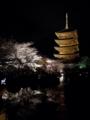 『京都新聞写真コンテスト 東寺と夜桜』