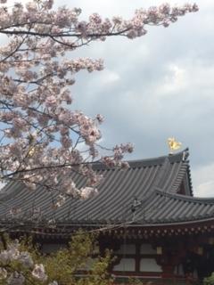 f:id:kyotowa:20170415183152j:plain