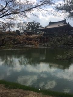 f:id:kyotowa:20170415183219j:plain