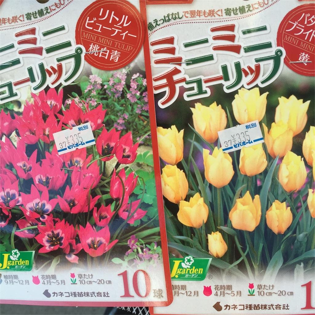 f:id:kyou-mo-iihi:20161018100245j:image