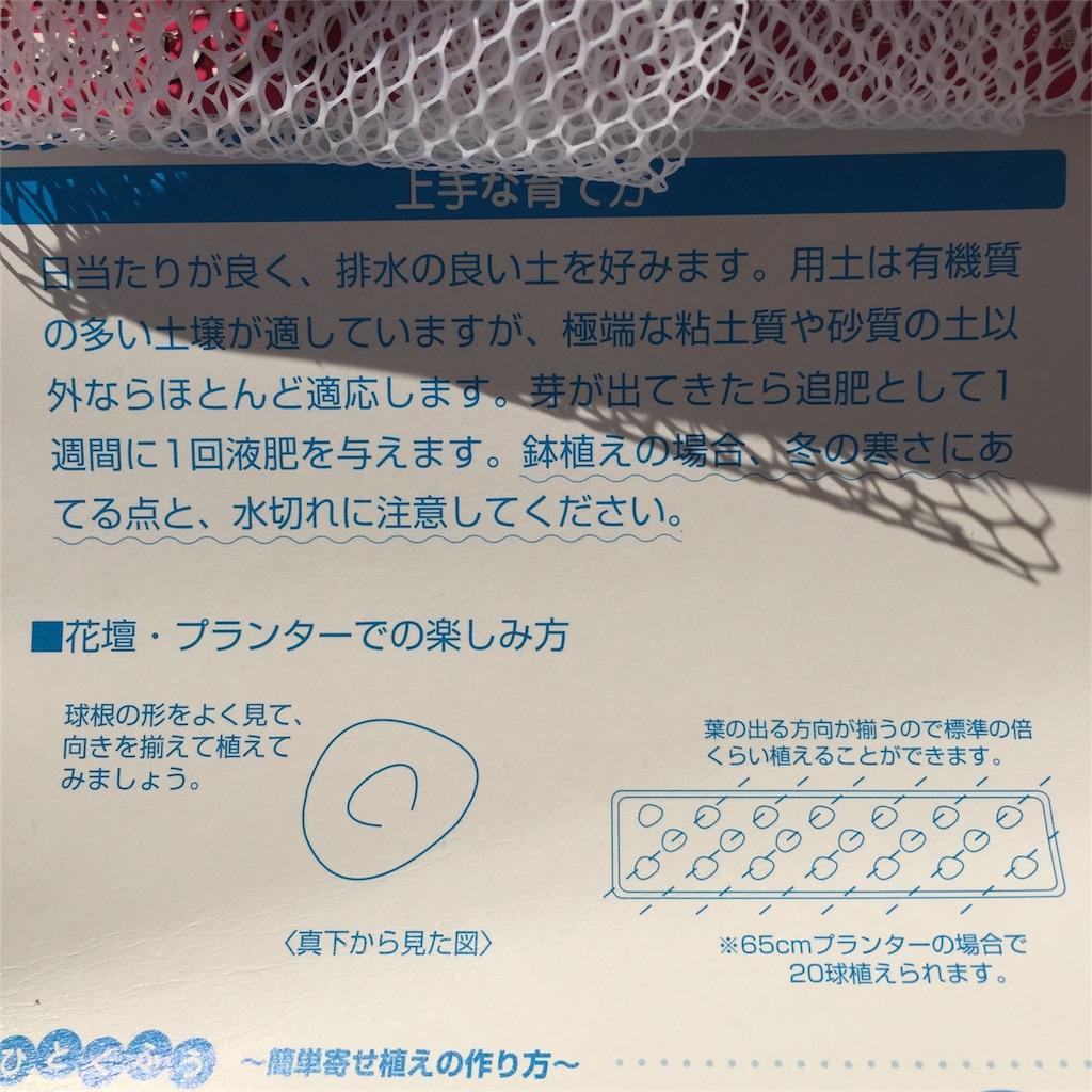 f:id:kyou-mo-iihi:20161018101037j:image