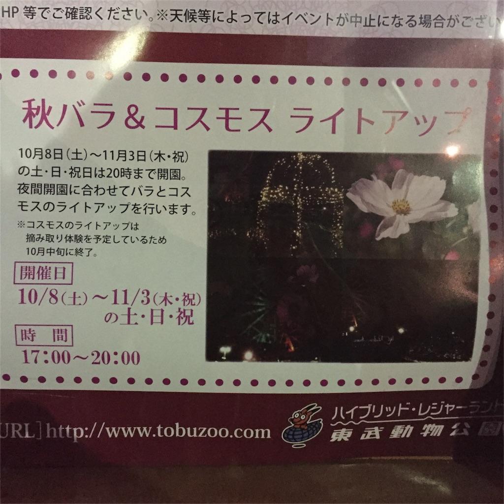 f:id:kyou-mo-iihi:20161030173500j:image