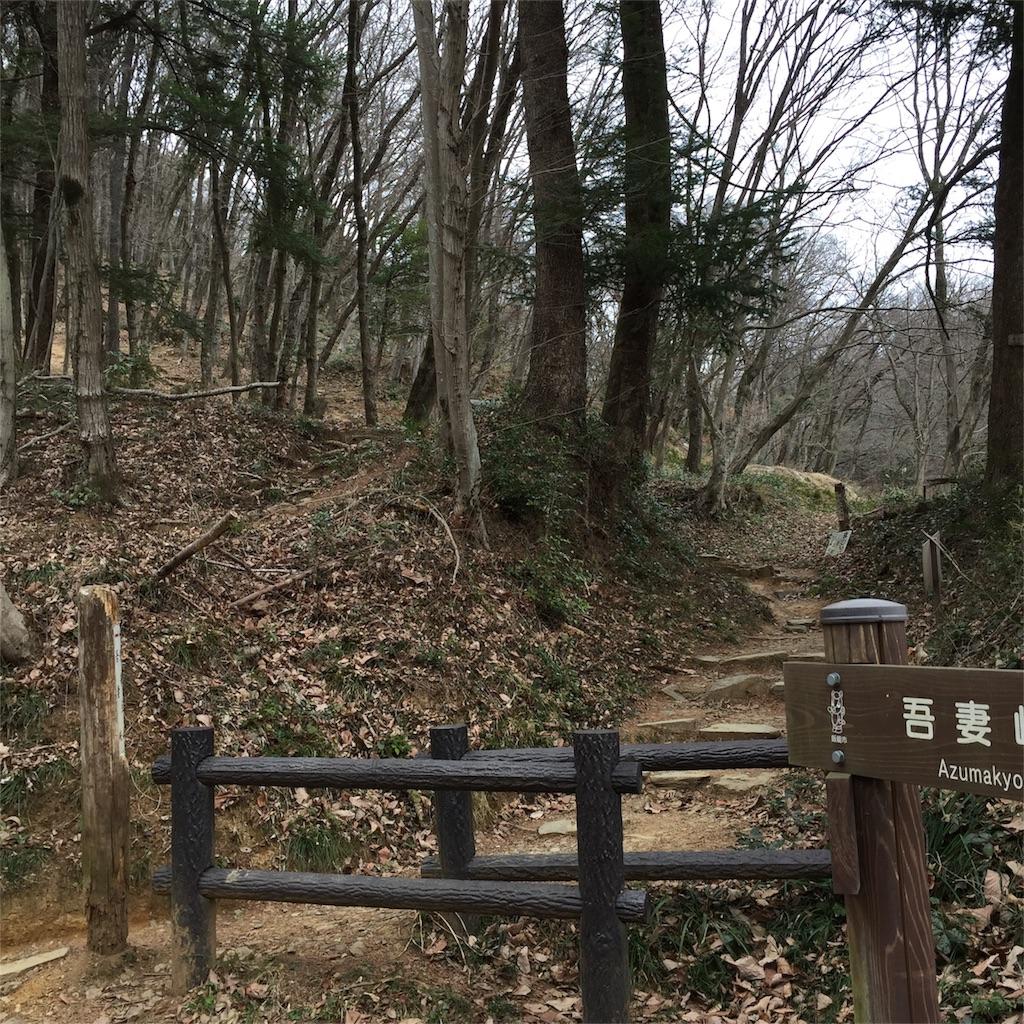f:id:kyou-mo-iihi:20170223114219j:image