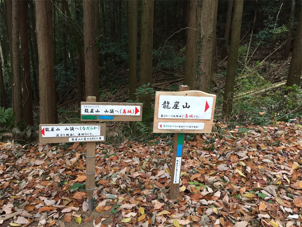 f:id:kyou-mo-iihi:20171210194233j:image
