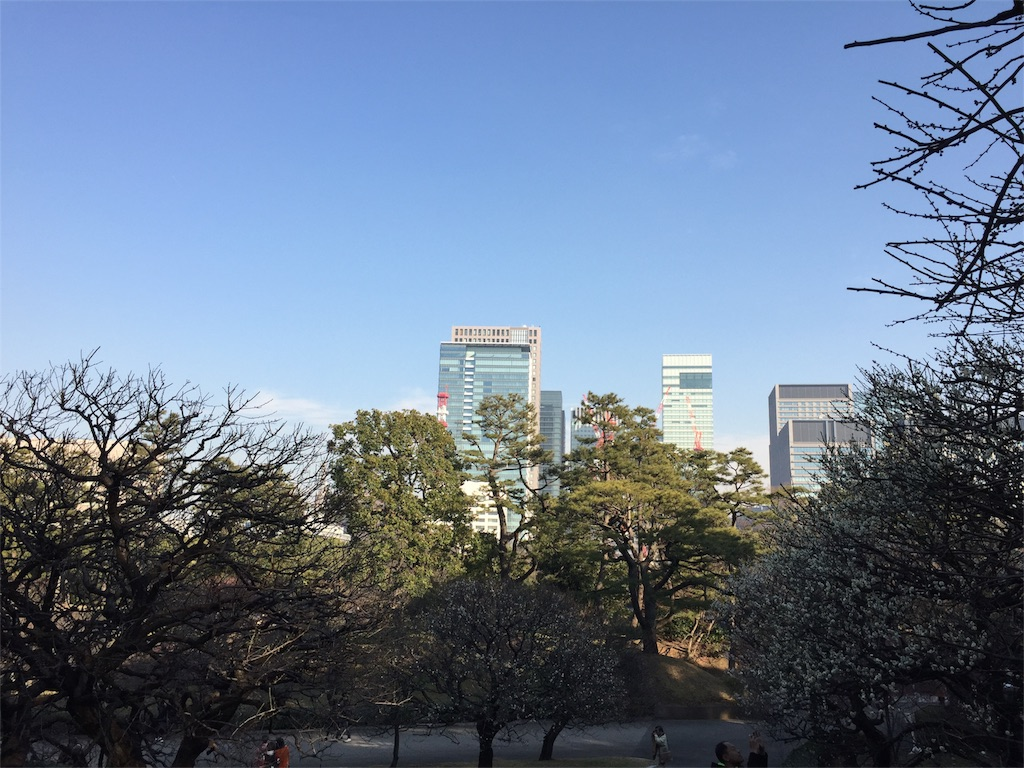 f:id:kyou-mo-iihi:20180218081516j:image