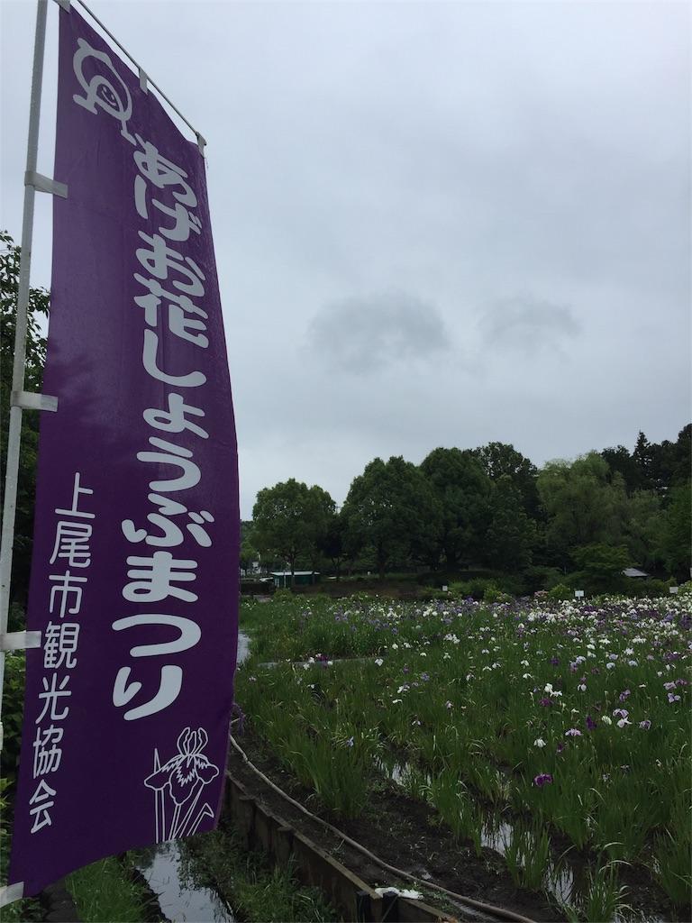 f:id:kyou-mo-iihi:20180610211240j:image