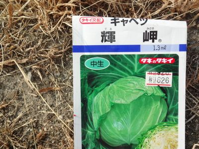 f:id:kyouchan59:20180805104948j:image