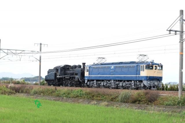f:id:kyouhisiho2008:20170116212930j:plain