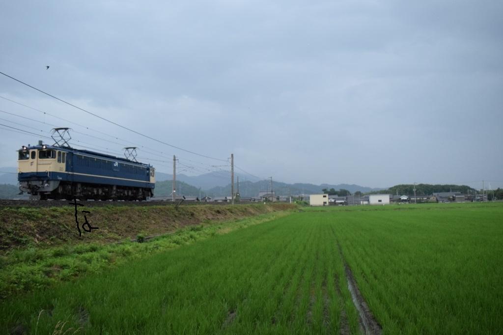 f:id:kyouhisiho2008:20170723223249j:plain