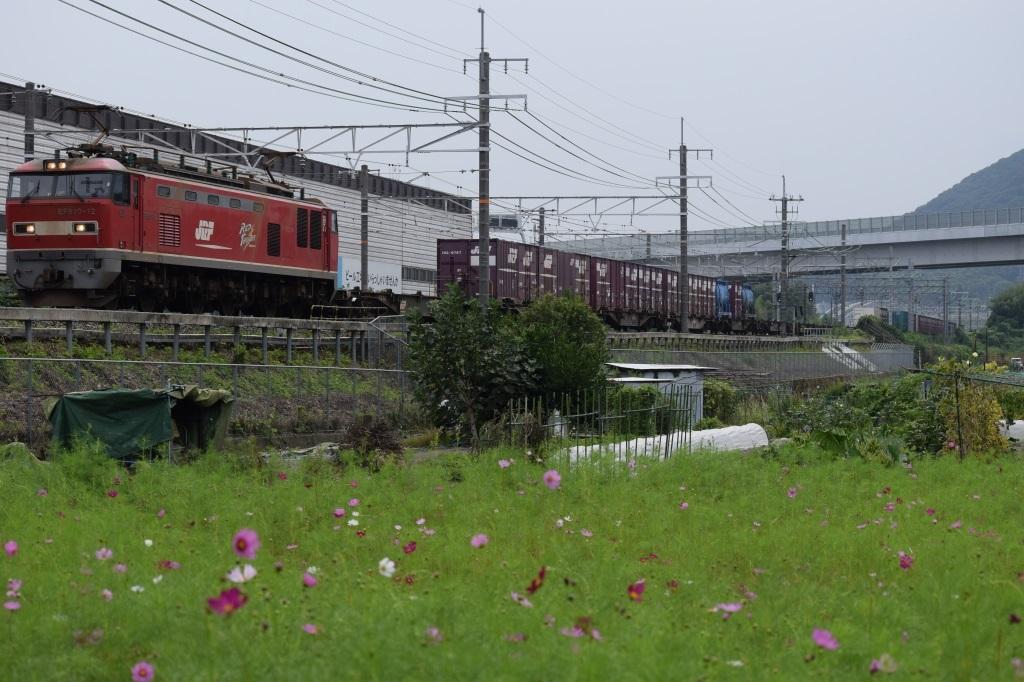 f:id:kyouhisiho2008:20170926001217j:plain
