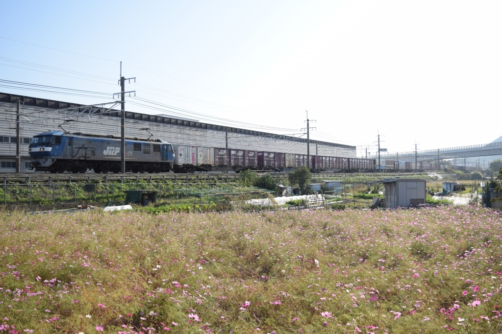f:id:kyouhisiho2008:20171110193504j:plain