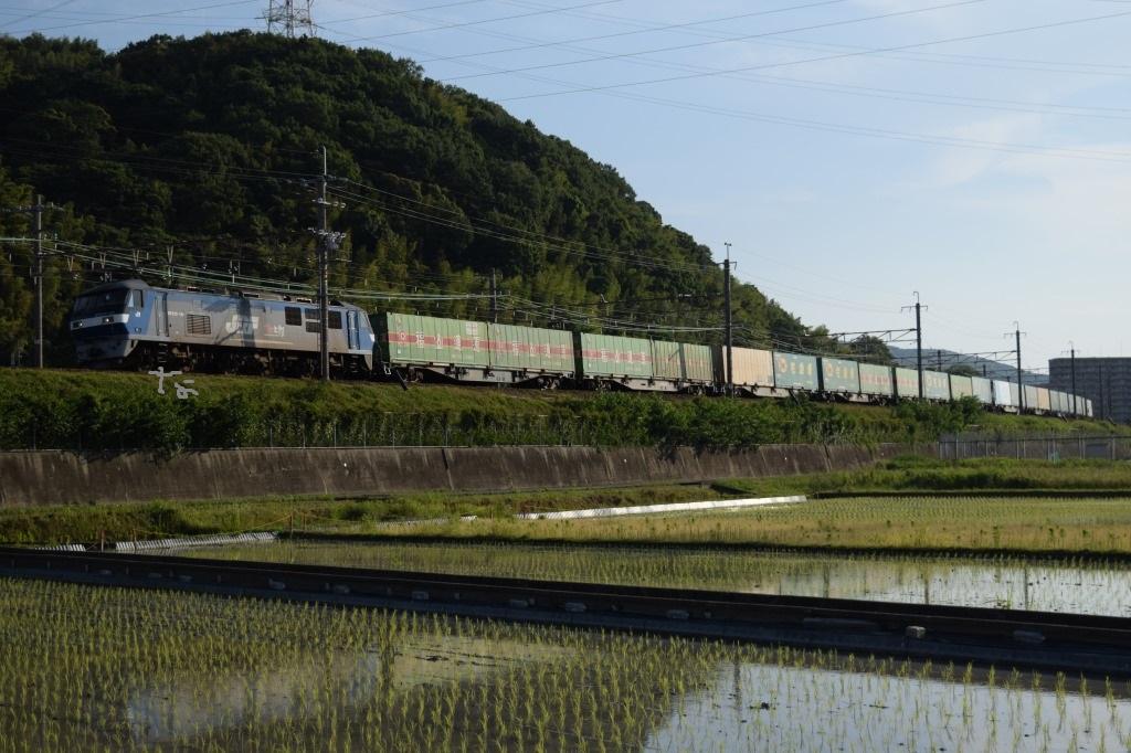 f:id:kyouhisiho2008:20180604203530j:plain